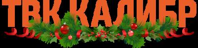 логотип новый год
